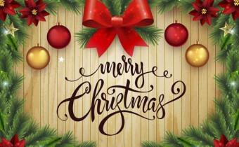Christmas_Day_2020 (15)